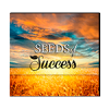 Seeds Of Success